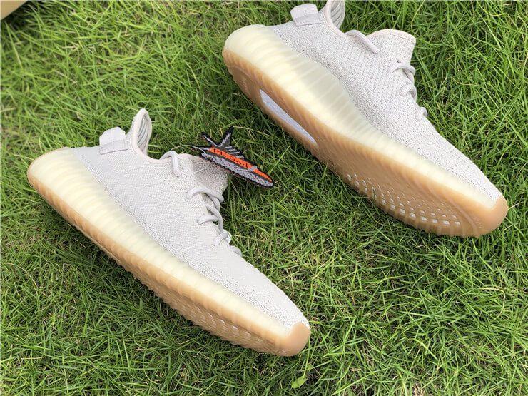 Đôi giày sesame nằm trên cỏ xanh