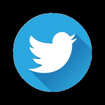 Logo Twitter Ruby Store